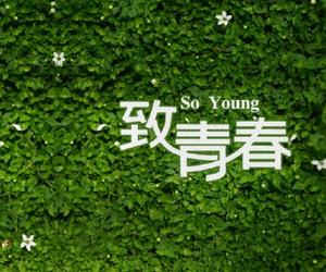 关于青春的句子