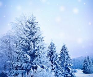 描写冬天的优美句子